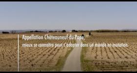 Châteauneuf-du-Pape et transition agro-écologique
