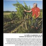 RVF n° 624 sept 2018 - Les vignes en gobelets