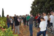 Les Professionnels Lyonnais au cœur du vignoble