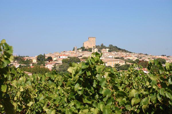 Le village de Châteauneuf-du-Pape