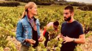 Châteauneuf-du-Pape, le vignoble le plus renommé de France